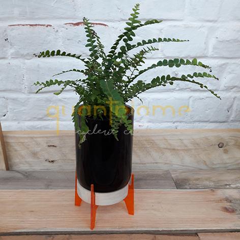 Kit à Planter